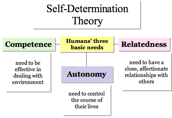 self-determination theory three needs competence autonomy relatedness