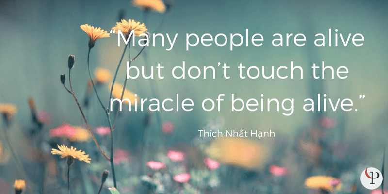 mindfulness quote thich nhat hanh