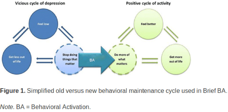 The Use Of A Behavioural Model For Behavioural Activation