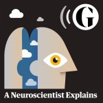 A Neurscientist Explains
