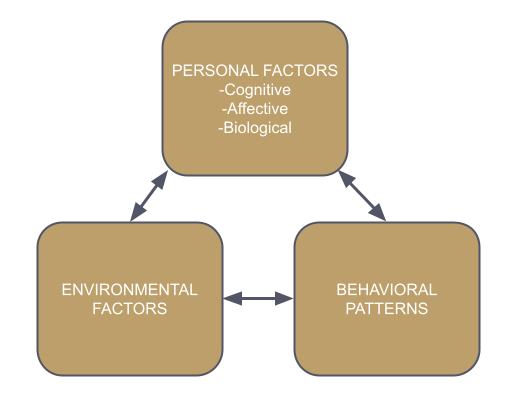 Social Cognitive Theory Model
