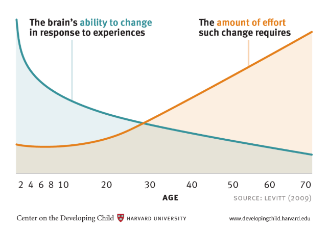 Brain's ability to change