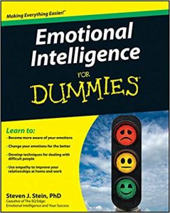 The Dummies Guide to Emotional Intelligence