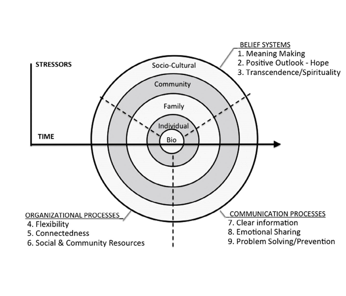 Family Resilience Theory