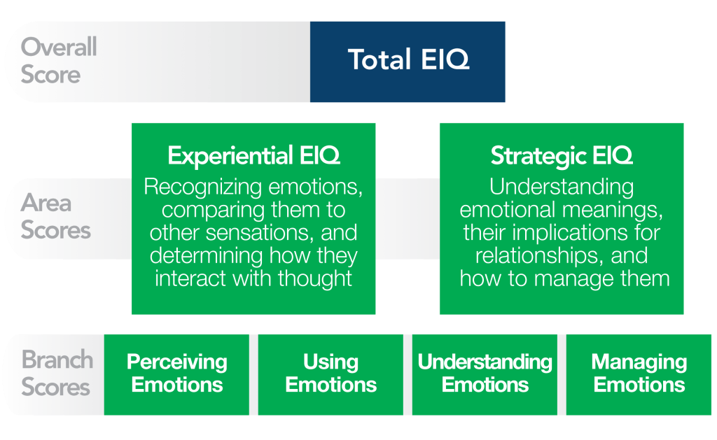 Emotional Intelligence Skills and How to Develop Them