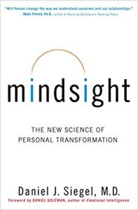 Mindsight Change Your Brain And Your Life