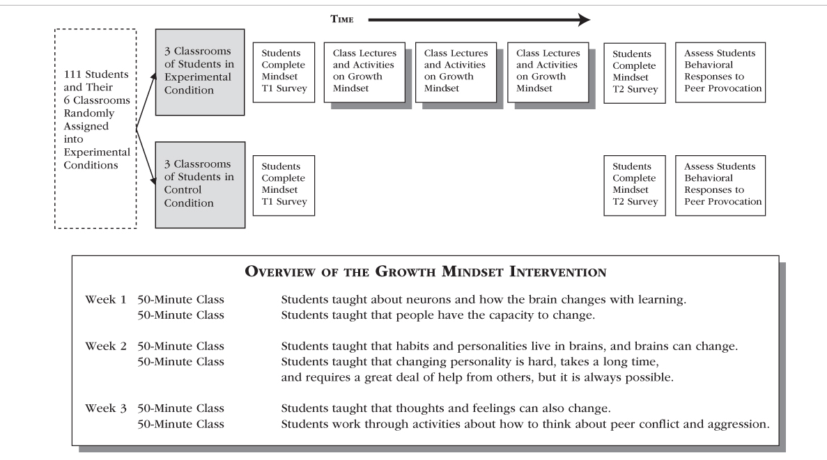 Overview of the Growth Mindset Intervention