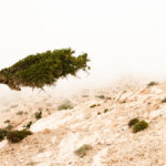 Mastering Mental Toughness