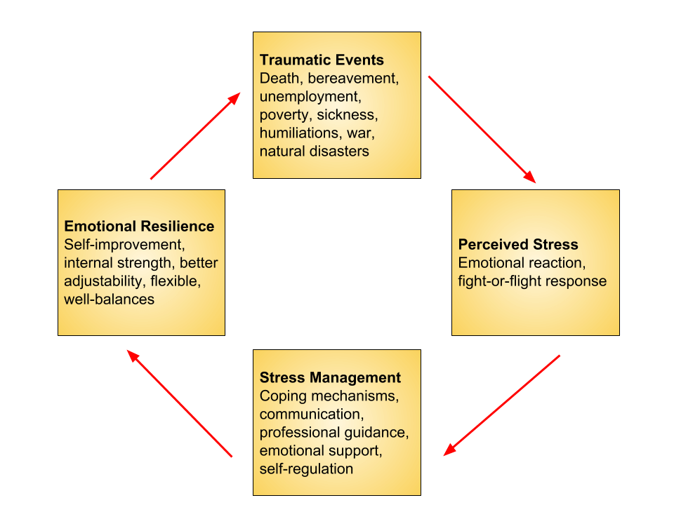 Cycle of Stress and Emotional Resilience