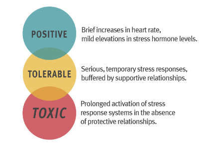 The 3 Types of Stress