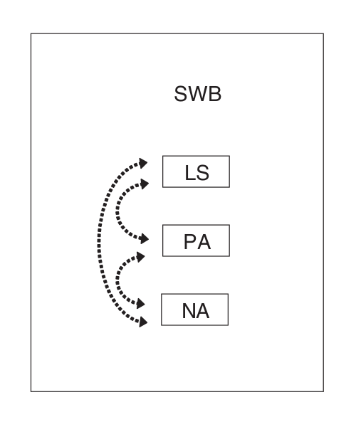 Tripartite Model SWB