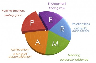 A scientific theory to happiness - perma model