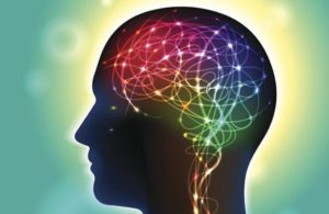 What is Neuroplasticity? A Psychologist Explains [+14 Exercises]