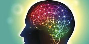 Cognitive Distortions: When Your Brain Lies to You