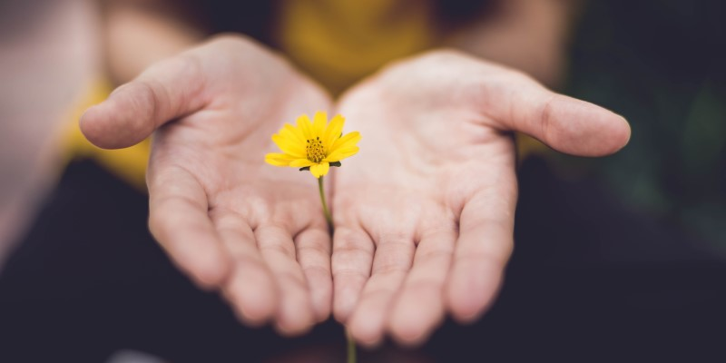 What is Forgiveness and What are the Benefits?