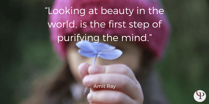 mindfulness quote amit ray