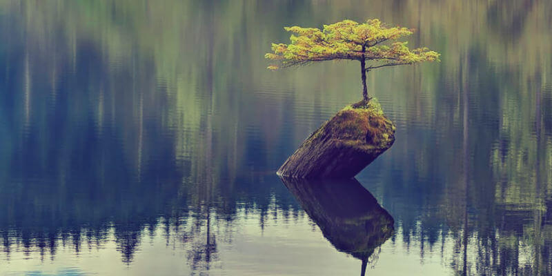 Resilience in Positive Psychology