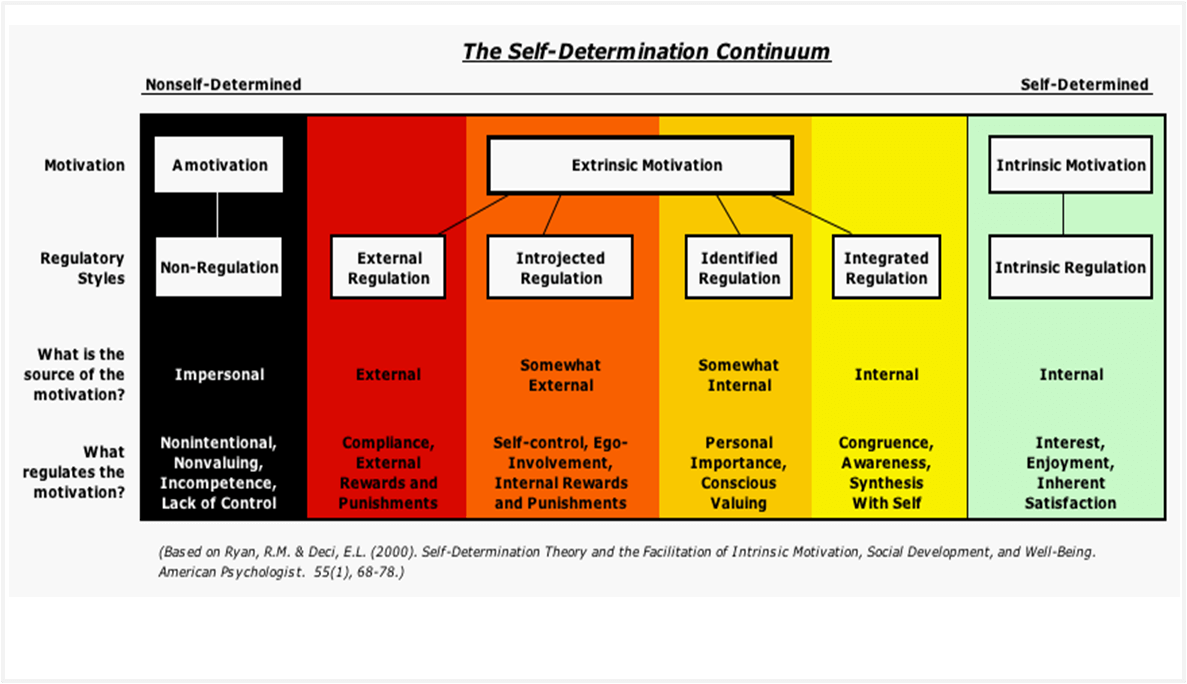 Self Determination Theory Diagram